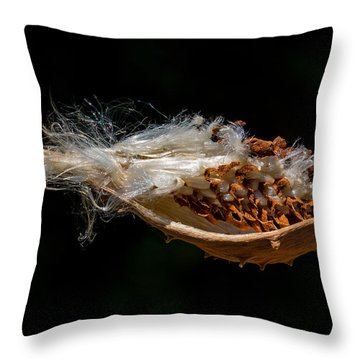 Pearl Milkweed Pod Split Open Throw Pillow