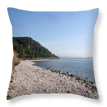 Throw Pillow featuring the photograph Pebbled Beach by Tracey Harrington-Simpson