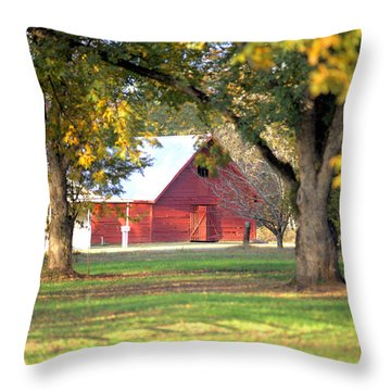 Throw Pillow featuring the photograph Pecan Orchard Barn by Gordon Elwell