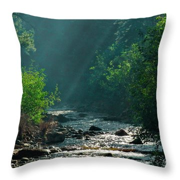 Pecos River Spring Throw Pillow