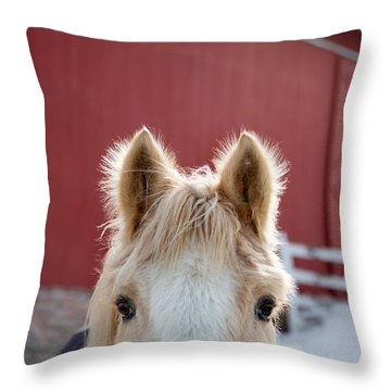 Throw Pillow featuring the photograph Peek A Boo by Courtney Webster