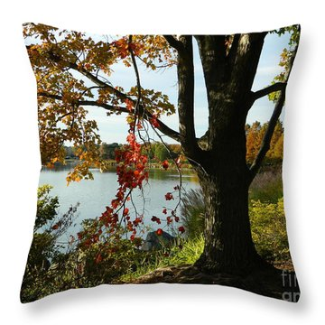 Throw Pillow featuring the photograph Peek-a-boo  by Emmy Marie Vickers
