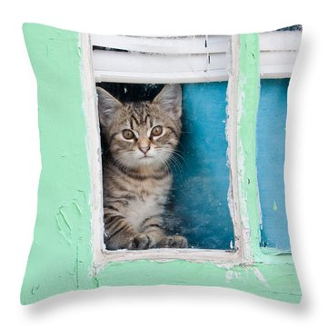 Throw Pillow featuring the photograph Peek-a-boo by Jean Haynes