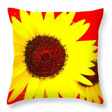 Throw Pillow featuring the photograph Peek A Boo by Kathy Barney
