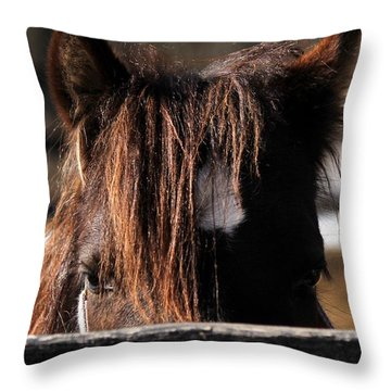 Peek-a-boo Pony Throw Pillow