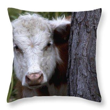 Peek A Moo Throw Pillow