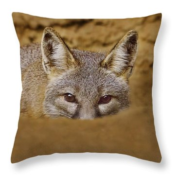 Throw Pillow featuring the photograph Peekaboo  by Brian Cross