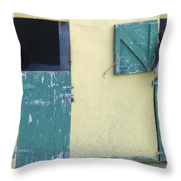 Peekaboo Throw Pillow by Suzanne Oesterling