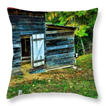 Throw Pillow featuring the photograph Peeking Calves by Kenny Francis
