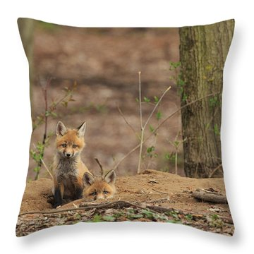 Peeking From The Fox Hole Throw Pillow by Everet Regal