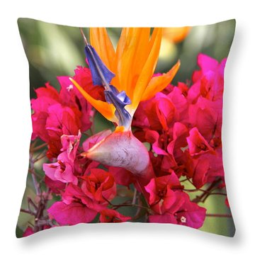 Peeking Through  Throw Pillow by Suzanne Oesterling