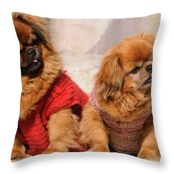 Pekingese Pair Throw Pillow by Jeremy Voisey