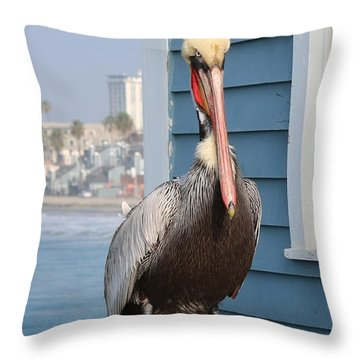 Throw Pillow featuring the photograph Pelican - 4 by Christy Pooschke