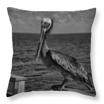 Pelican 3 Throw Pillow by J Riley Johnson