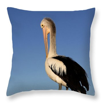 Pelican Alone Throw Pillow