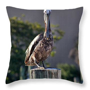 Pelican At Boat Dock Throw Pillow