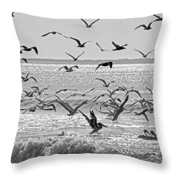 Pelican Chaos Throw Pillow by Betsy Knapp