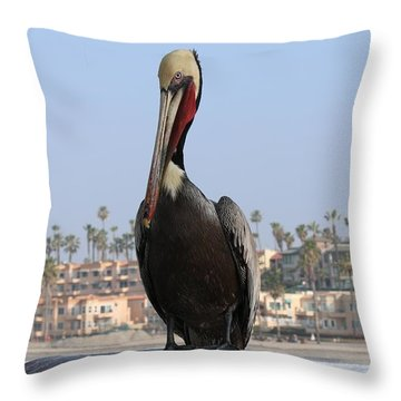 Throw Pillow featuring the photograph Pelican  by Christy Pooschke