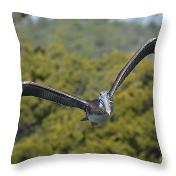 Pelican Coming Your Way Throw Pillow by Dan Williams