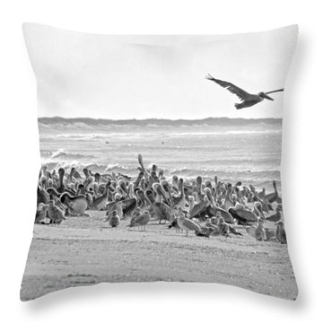 Pelican Convention  Throw Pillow by Betsy Knapp