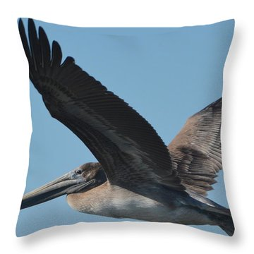 Pelican Flies Away Throw Pillow by Dan Williams