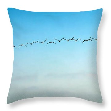Pelican Flight Line Throw Pillow