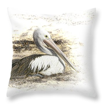 Pelican Throw Pillow by Holly Kempe