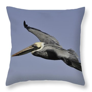 Throw Pillow featuring the photograph Pelican In Flight by Bradford Martin