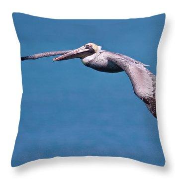 Pelican In Flight Florida Throw Pillow by Mr Bennett Kent