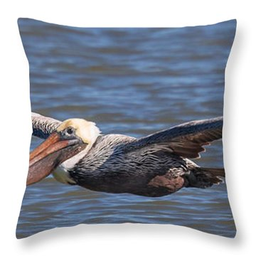 Pelican In Flight Throw Pillow