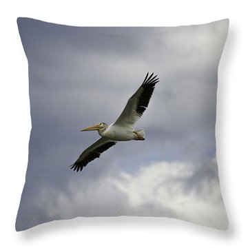 Pelican In Flight Throw Pillow by Thomas Young