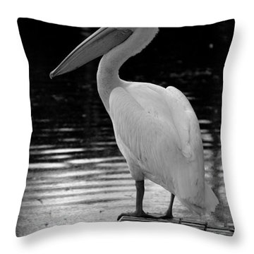 Pelican In The Dark Throw Pillow by Laurie Perry