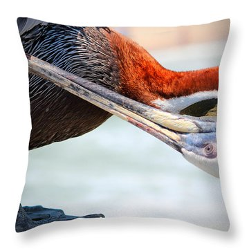 Pelican Itch Throw Pillow