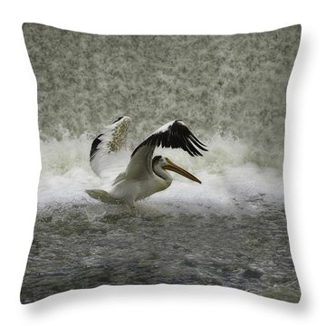 Pelican Landing In Color Throw Pillow by Thomas Young