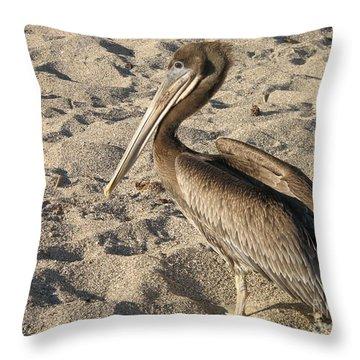 Pelican On Beach Throw Pillow by DejaVu Designs