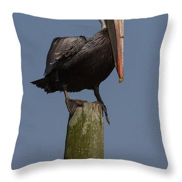 Pelican On Post IIi Throw Pillow