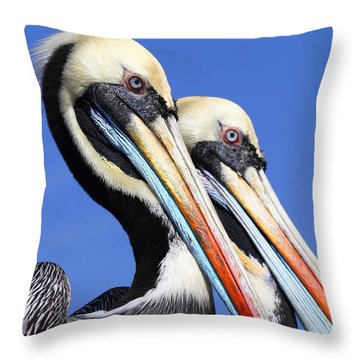 Pelican Perfection Throw Pillow by James Brunker