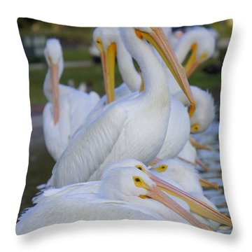 Pelican Pile Throw Pillow