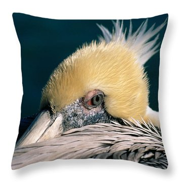 Pelican Portrait Throw Pillow
