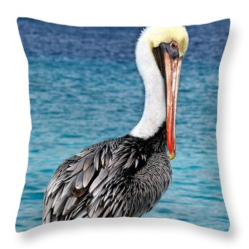 Pelican Portrait Throw Pillow by Jean Noren