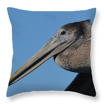 Pelican Profile Throw Pillow by Dan Williams
