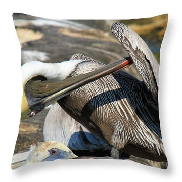 Pelican Scratch Throw Pillow by Adam Jewell