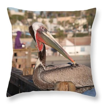 Pelican Sitting On Pier  Throw Pillow