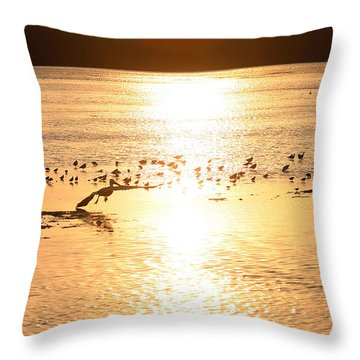 Pelican Sunset Throw Pillow by Mark Russell