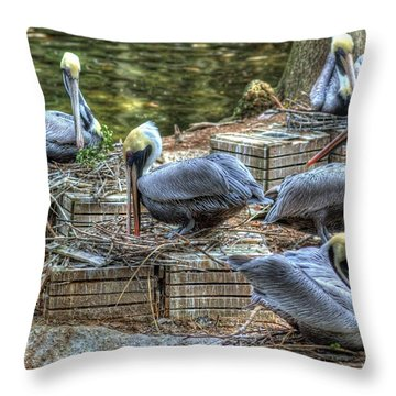 Throw Pillow featuring the photograph Pelicans By The Dock by Donald Williams