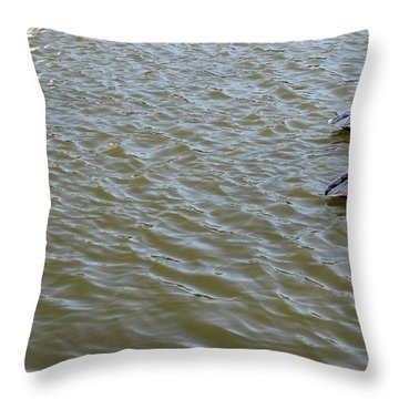 Throw Pillow featuring the photograph Pelicans In Florida by Oksana Semenchenko