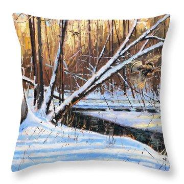 Peme Bon Won River Fly By Throw Pillow by Larry Seiler