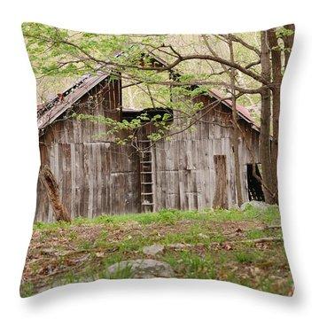 Pendleton County Barn Throw Pillow
