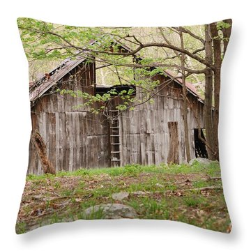 Pendleton County Barn Throw Pillow