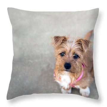 Penelope 3 Throw Pillow